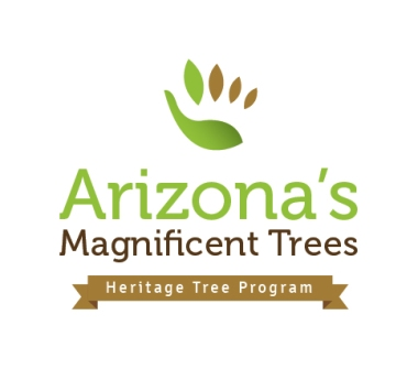heritage-tree