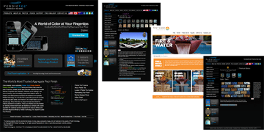 Old Website Examples